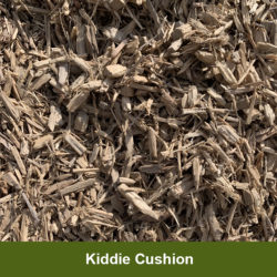 Kiddie-Cushion