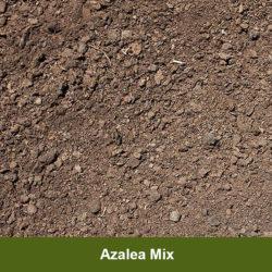 Azalea-Mix