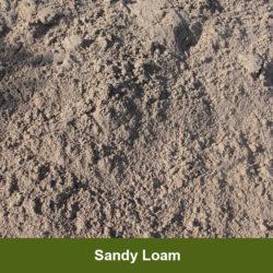 Sandy-Loam